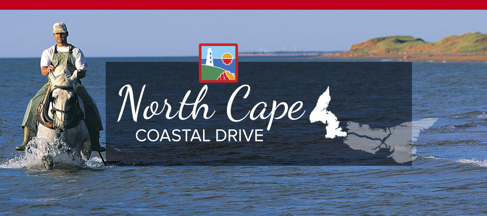 North Cape Coastal Drive